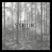 IHSAHN 新曲「Stridig」のミュージックビデオを公開
